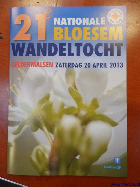 20-04-2013 Geldermalsen 33 km  (9)