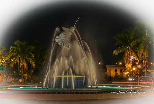 sailfish fountain sailfishfountain water icon iconic night lights stuart florida usa landscape outdoors outside