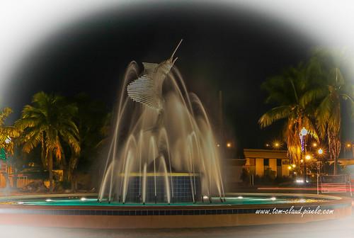 sailfish fountain sailfishfountain water icon iconic night lights stuart florida usa landscape outdoors outside