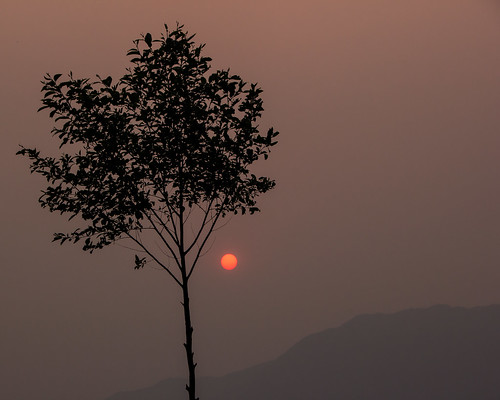 travel nepal sunset tree asia countries p kathmandu southasia budhanilkantha travelphotography 2013 centralregion shivapurinationalpark dandagaon