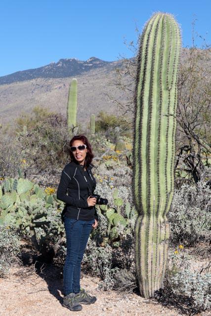Heather looks tiny next to a Saguaro