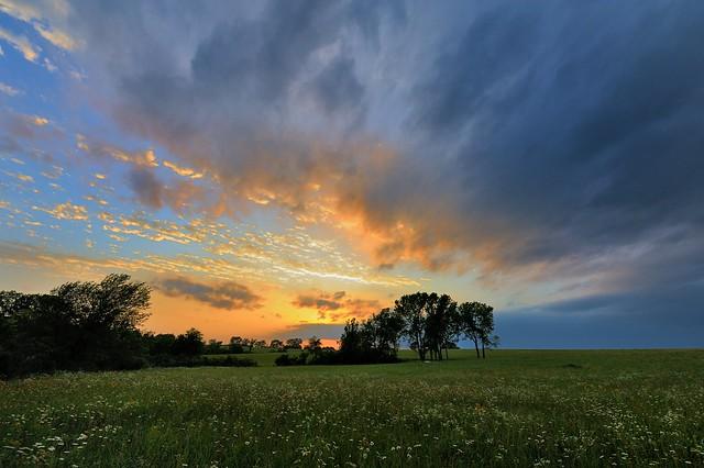 Backyard Sunset [seen in Explore]