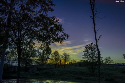 sansebastiandelosreyes madrid españa atardecer sunset landscape paisaje contraluz sunsetintheneighborhood coucherdusoleildanslequartier sonnenuntergangindernachbarschaft sonnenuntergang couchersdesoleil sol sun soleil sonne jothagarcia nikond3200 nikkor180550mmf3556 wolken nuages clouds backlighting rétroéclairage hintergrundbeleuchtung arboles bäume arbres trees colores colors couleurs farben höhepunkte reflexes reflejos faitssaillants sky ciel himmel sombras shadows siluetas 7dwf silhouettes silhouetten schatten nuances nwn comunidadespañola flickrtravelaward