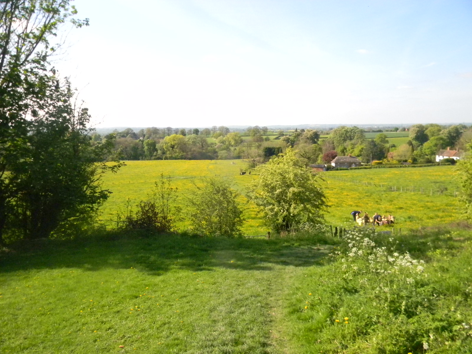 Buttercup meadows Wendover Circular Just past Ellesborough Church Spot the brownie pack