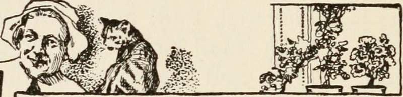 "Image from page 341 of ""Kate Bonnet; the romance of a pirate's daughter"" (1914)"