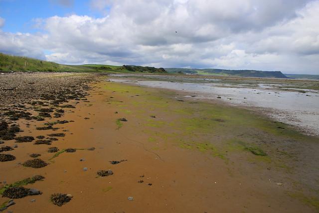 The coast east of Alturlie
