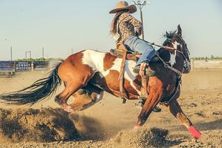 Cowgirl Fast | by micadew