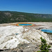 Excelsior Group (views from Midway Bluff) (Midway Geyser Basin, Yellowstone Hotspot Volcano, nw Wyoming, USA)