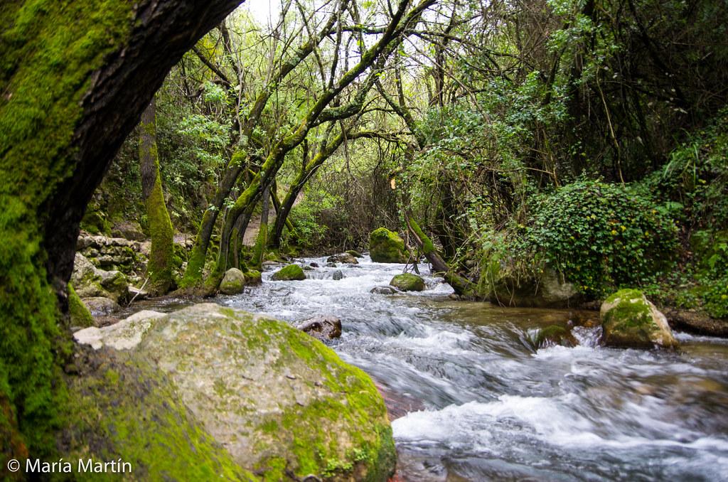 Río Majaceite (El Bosque / Benamahoma). PN Sierra de Grazalema (Cádiz)