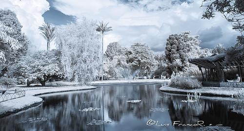 infrarrojo paisaje infrared landscape bogota garden