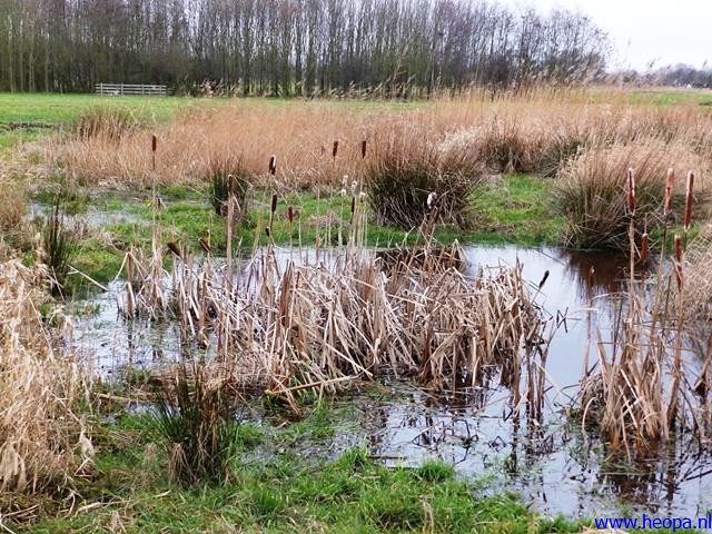 21-12-2013 Den Hoorn 25 km  (46)