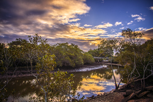 trees sunset sky reflection clouds creek landscape day cloudy cloudsstormssunsetssunrises