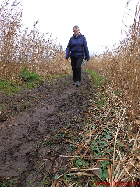 25-01-2014 Boskoop 26 Km  (25)