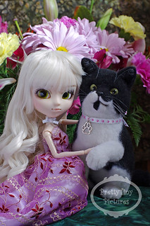 Cherie & replica kitty 1sm | by Alliecat09