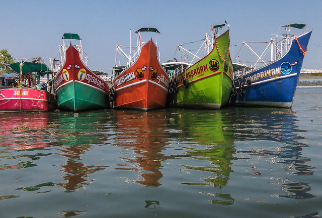 Colorful boats, Kochin
