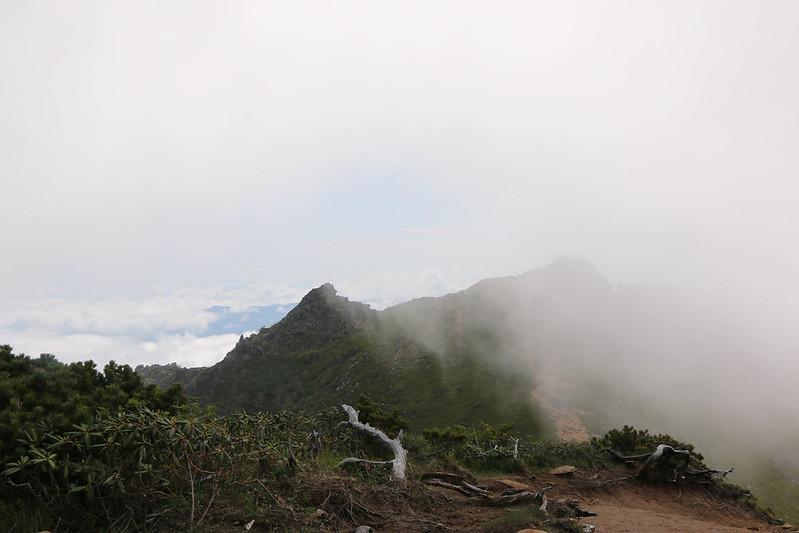 2014-06-29_00255_天狗岳.jpg