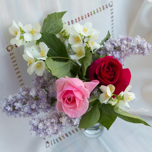 ¡Feliz cumpleaños querida mamá! ;-) - Happy Birthday dear Mom! ;-)