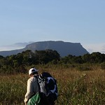 Wed, 06/11/2014 - 1:12pm - Tafelberg Tepui as seem from the savanna near Kappel Airstrip in central Suriname. Photo by Julian Aguirre.