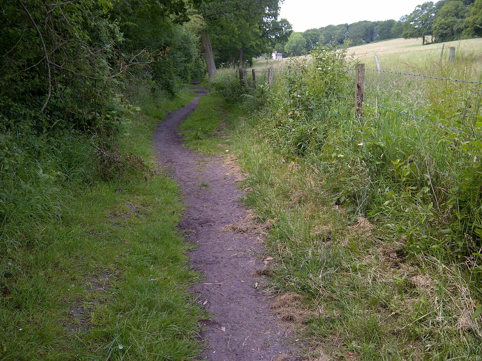 IMG-20140623-00384 1.7 path