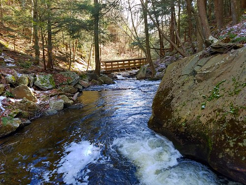 Little Cherry Run Trail