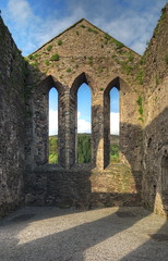Baltinglass Abbey #3