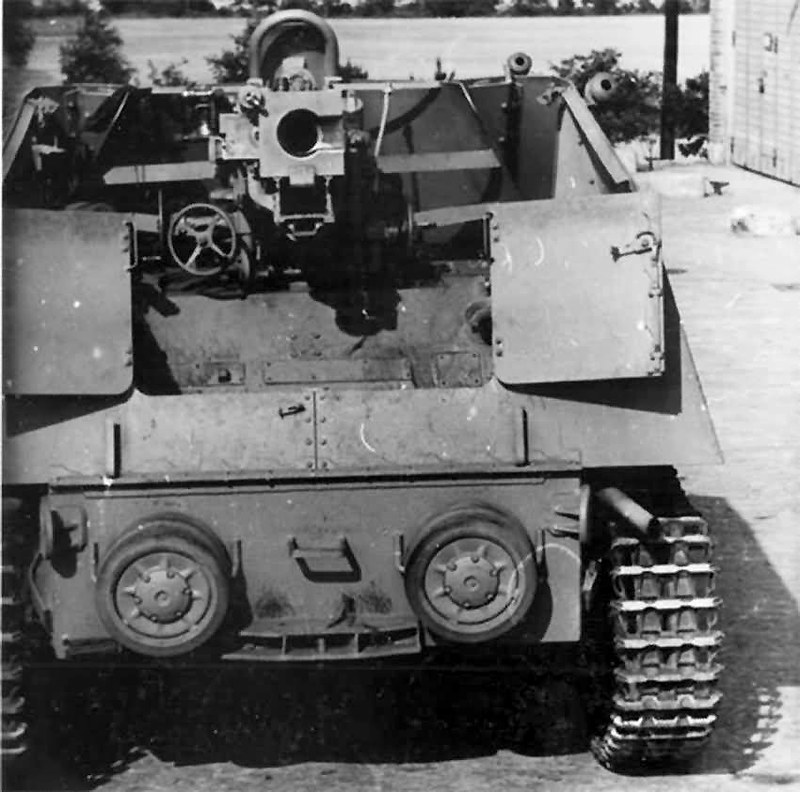 Nashorn rear end