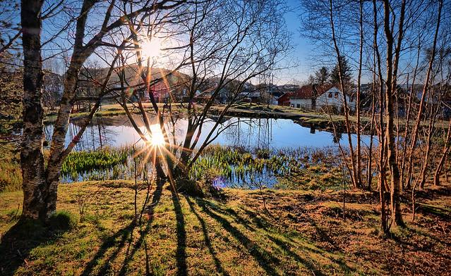 Spring morning, Norway