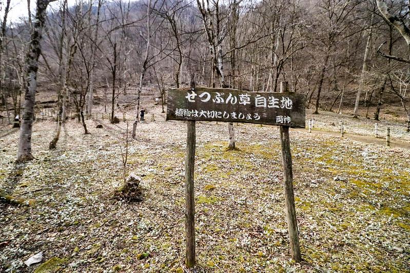 20170312-四阿屋山-0135.jpg