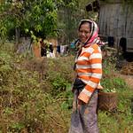 03 Viajefilos en Laos, Bolaven Plateau 79
