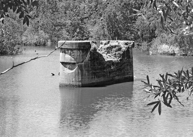Bridge Supports, White Rock Creek, Trinity County, Texas 1404251325bw