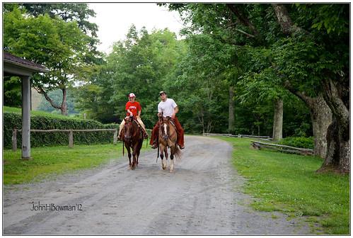 summer horses people june parks northcarolina nationalparks blueridgeparkway 2012 largeanimals ncmountains wataugacounty nrhp canon24105l fencesgates moseshconememorialpark june2012