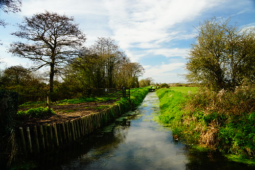 yatton strawberryline northsomerset england sony a6000 stream color sky water outdoors trees grass spring blue landscape river riverbank uk nature britain