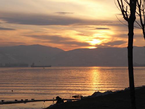 sunset izmit turkey tree water river