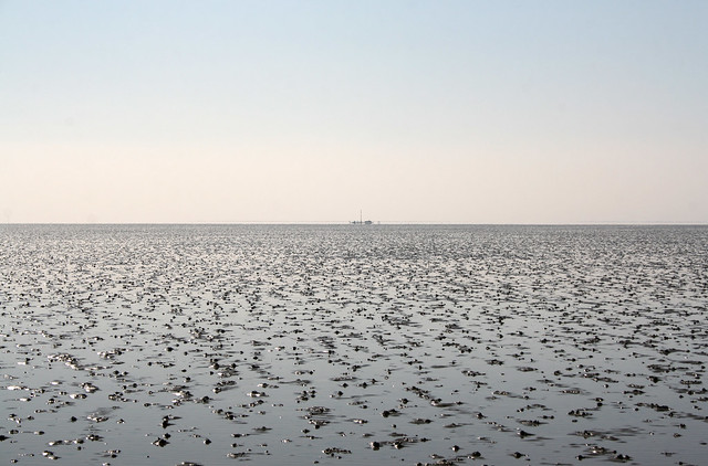 The Broomway on Maplin Sands