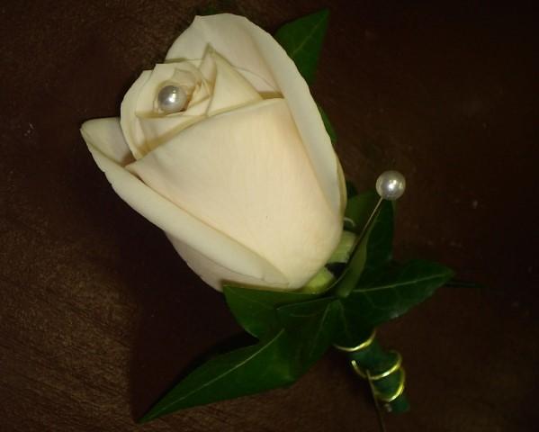 Farah Florist W-BC-20.      $10
