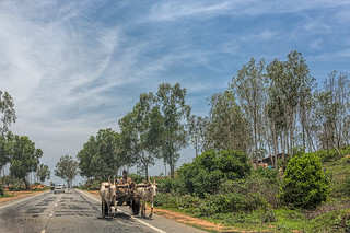 Indian Bullock Cart | by Sharad Medhavi