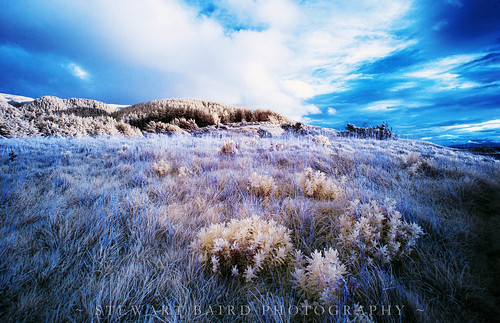 Something Over The Hill | by stewartbaird