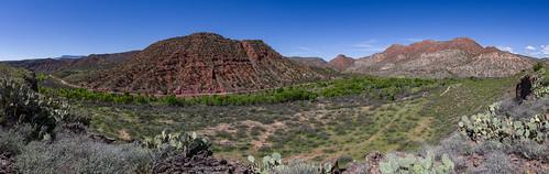 arizona coconinonationalforest fr131 forestservice pentaxk1 redrockrangerdistrict sycamorecanyonroad usfs verderiver desert forest outdoors panshot clarkdale unitedstates