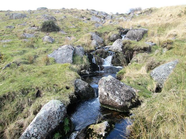 Winney's Down Brook Foot Dartmoor