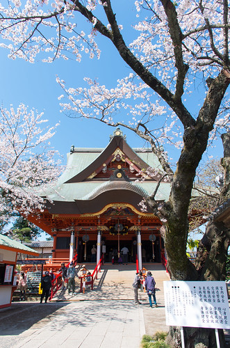 光のどけき春の日に - Cherry blossom, old temple, and blue sky - | by SP48K-NT