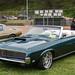 Terra Nova 8th Annual Car Show