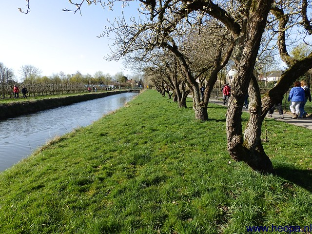 20-04-2013 Geldermalsen 33 km  (35)