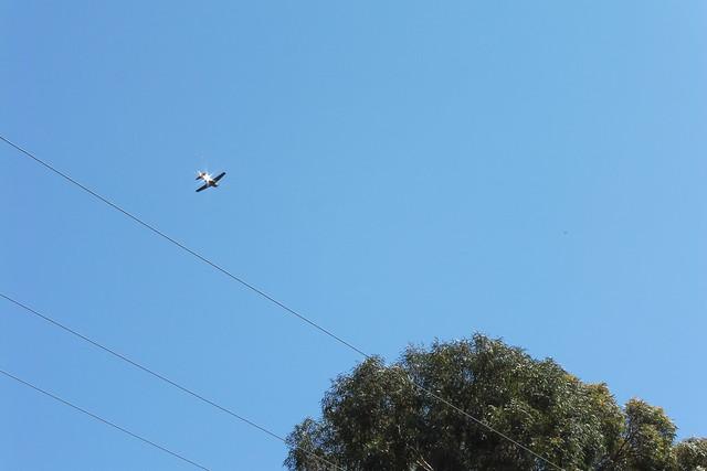 P1030720 noisy goleta plane