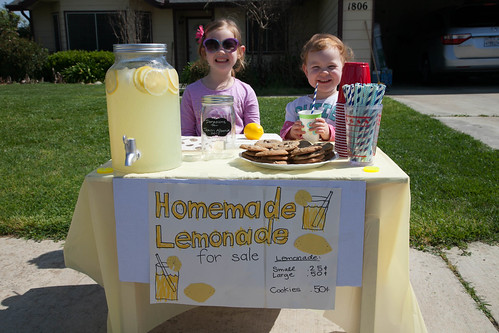 Avery's Lemonade Stand | by shaycam