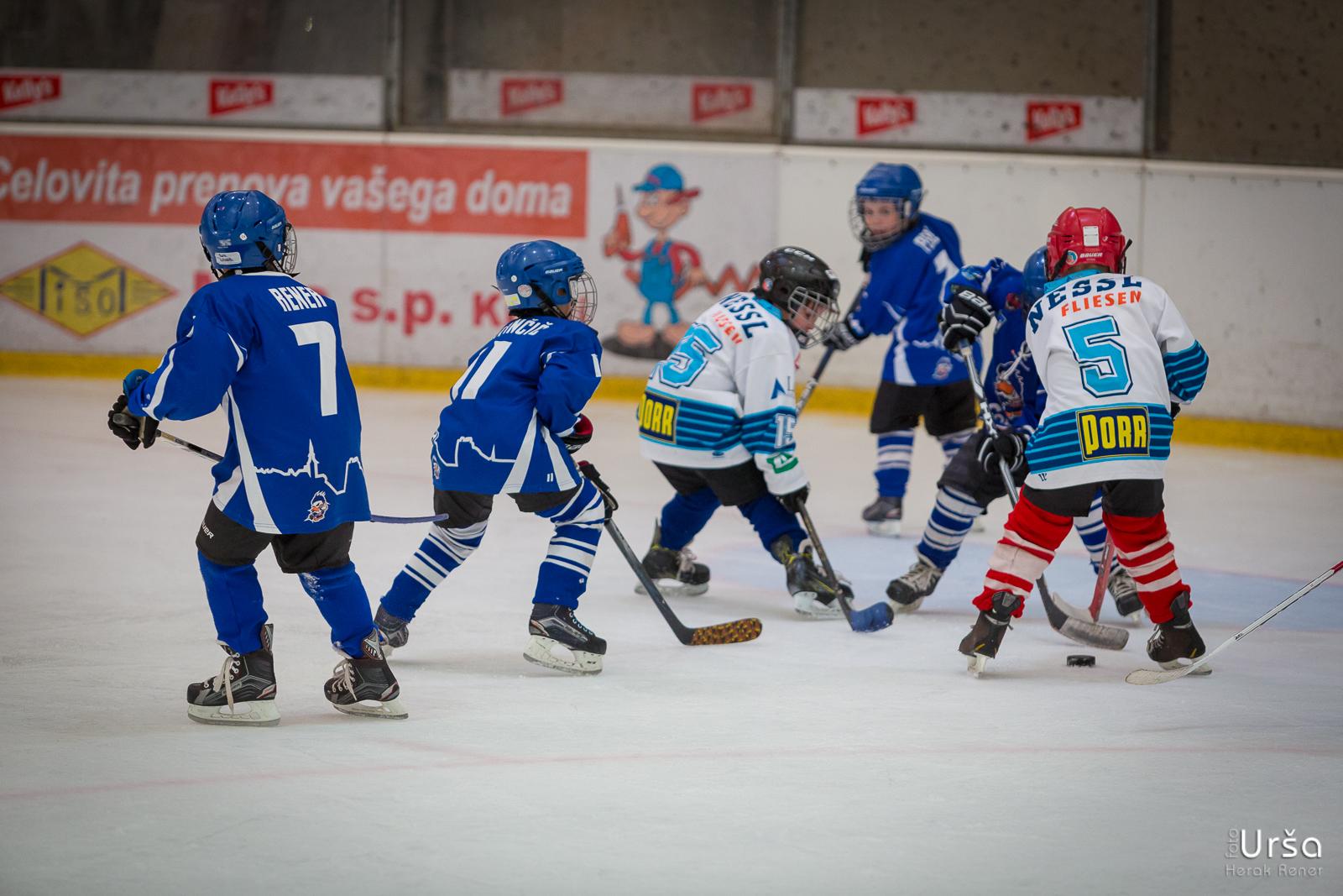 Fox Trophy Kranj 2017 - 1. dan