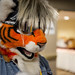 Biggest Little Fur Con 2014 - Day 1