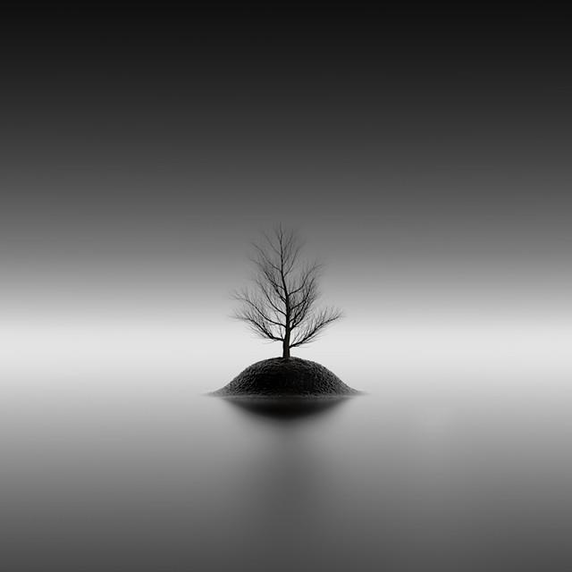 tree island v2