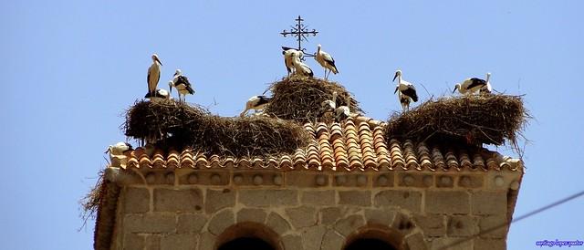 Iglesia de Nuestra Señora de las Nieves (Manzanares el Real)