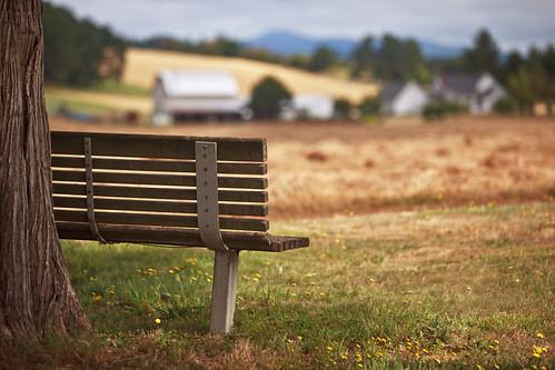 road camera fern tree cemetery field oregon canon bench lens ian eos is view bokeh mark farm images ridge ii 5d usm southeast agriculture sane farmfield ef70200mm f28l stayton boedigheimer