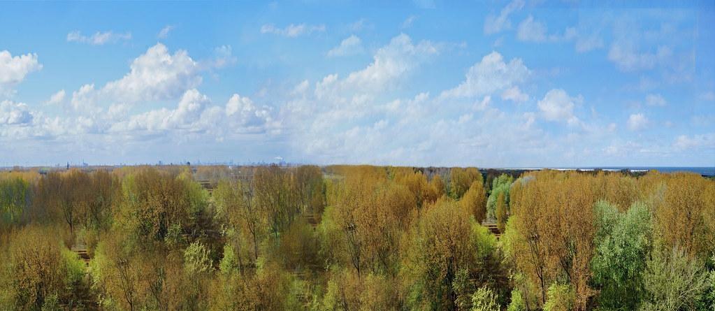 panoramakijkduin